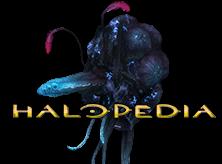 Halopedia Logo Quick.png