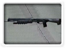 IlmHalo PTG Shotgun.jpg