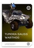 REQ Card - Tundra Gauss Warthog.jpg