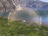 Bubble Shield.jpg