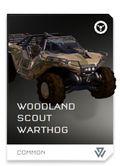 REQ Card - Scout Warthog Woodland.jpg