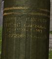 H3 Type-C Capsule Label.png