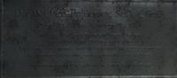 Wallace fujikawa bio.png