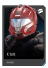 H5G REQ Helmets CQB Rare
