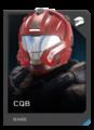 H5G REQ Helmets CQB Rare.png