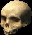 H3-Skull.png