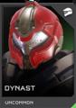 H5G-Dynast helmet REQ.png