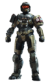 HINF - Noble Defender armor coating (Transparent).png
