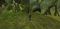 MMO AlienJungle 2.jpg