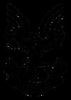 Halopedia Era UNSC.png