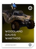 REQ Card - Woodland Gauss Warthog.jpg