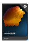 H5G REQ Visor Autumn Rare
