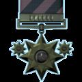 Distinguished tier 6.png