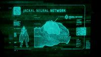 H5G-Jackal Neural Network.png