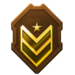 HTMCC Tour1 CommandSergeantMajor Rank.png