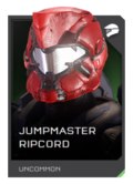 H5G REQ Helmets Jumpmaster Ripcord Uncommon.png