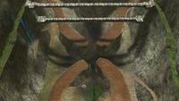 Infinity-CenterOverview.jpg