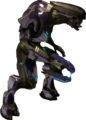 Special Operations Sangheili.png