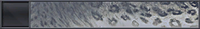 HTMCC Nameplate SnowLeopard.png