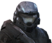 HR NobleSix Firefight Icon.png