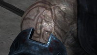 Brute Forerunner tatoo.png