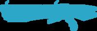 H4 - Scattershot HUD icon.png