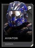 REQ Card - Aviator.png
