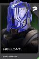 REQ Card - Hellcat.png