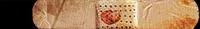 HTMCC Nameplate Bandage.png