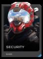 H5G REQ Helmets Security Rare.png