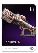 REQ card - Echidna.jpg