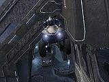 Flying mongoose.jpg
