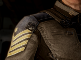 H4 - Uniform Rank Captain 1.png