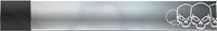 HTMCC Nameplate Platinum Skulls