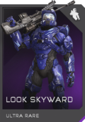 REQ Card - Look Skyward.png