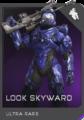 REQ Card - Look Skyward.png