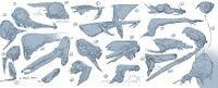 Sky Leviathan 3.jpg