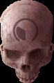 HR Custom Firefight Skull 1.png