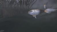 H2 Gravemind Fish.png