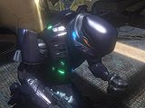 Halo 3 Spec Ops Elite.jpg
