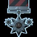 Distinguished tier 1.png