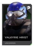 H5G REQ Helmets Valkyrie Hrist Uncommon.png