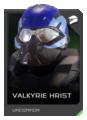 H5G REQ Helmets Valkyrie Hrist Uncommon.png