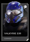 REQ Card - Valkyrie Eir.png