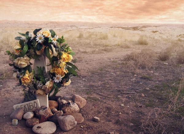 Richard Sekibo's memorial on Biko