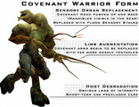 Warrior Form Covie2.png
