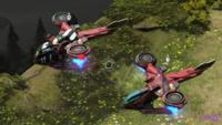 HW2 Hornet Comparison.png