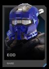 H5G REQ Helmets EOD Rare