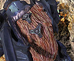 Halo3-HunterBack.jpg