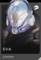 REQ Card - EVA.png